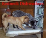 redneck-dishwashers