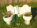 redneck-garden